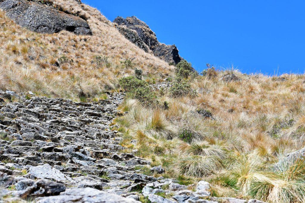 Inca Trail To Machu Picchu 4 Days Hike
