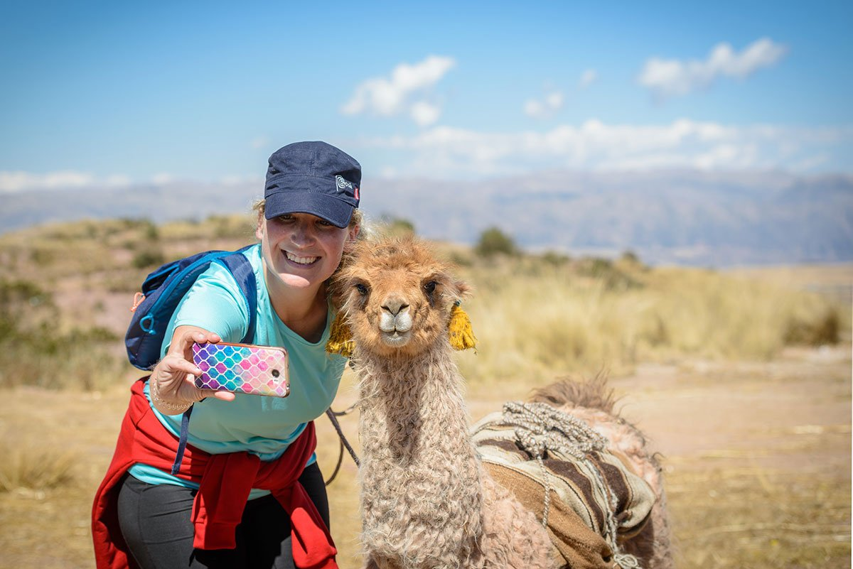 1 Day Tour Nature Walk With Alpacas and Llamas Chinchero