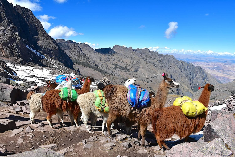 Lares Andean Trek to Machu Pichcu