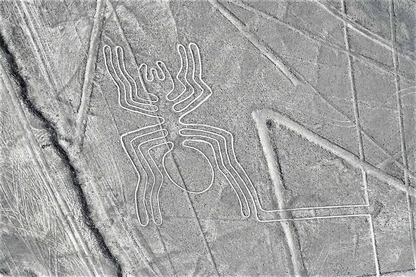 Tour Leaders Peru Nazca Lines