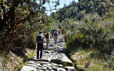 Best Time to Hike The Inca Trail
